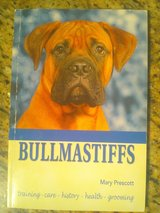 Bullmastiffs--Brand new/never used $ 10.00 in Fort Bliss, Texas